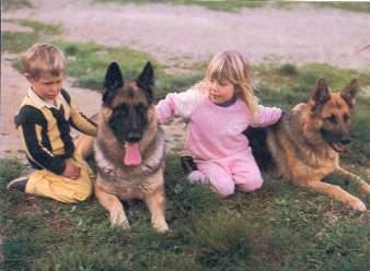 Comportamiento animal manejo del vínculo con los niños